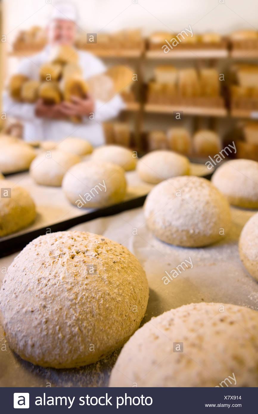Fresh loves of bread in bakery - Stock Image