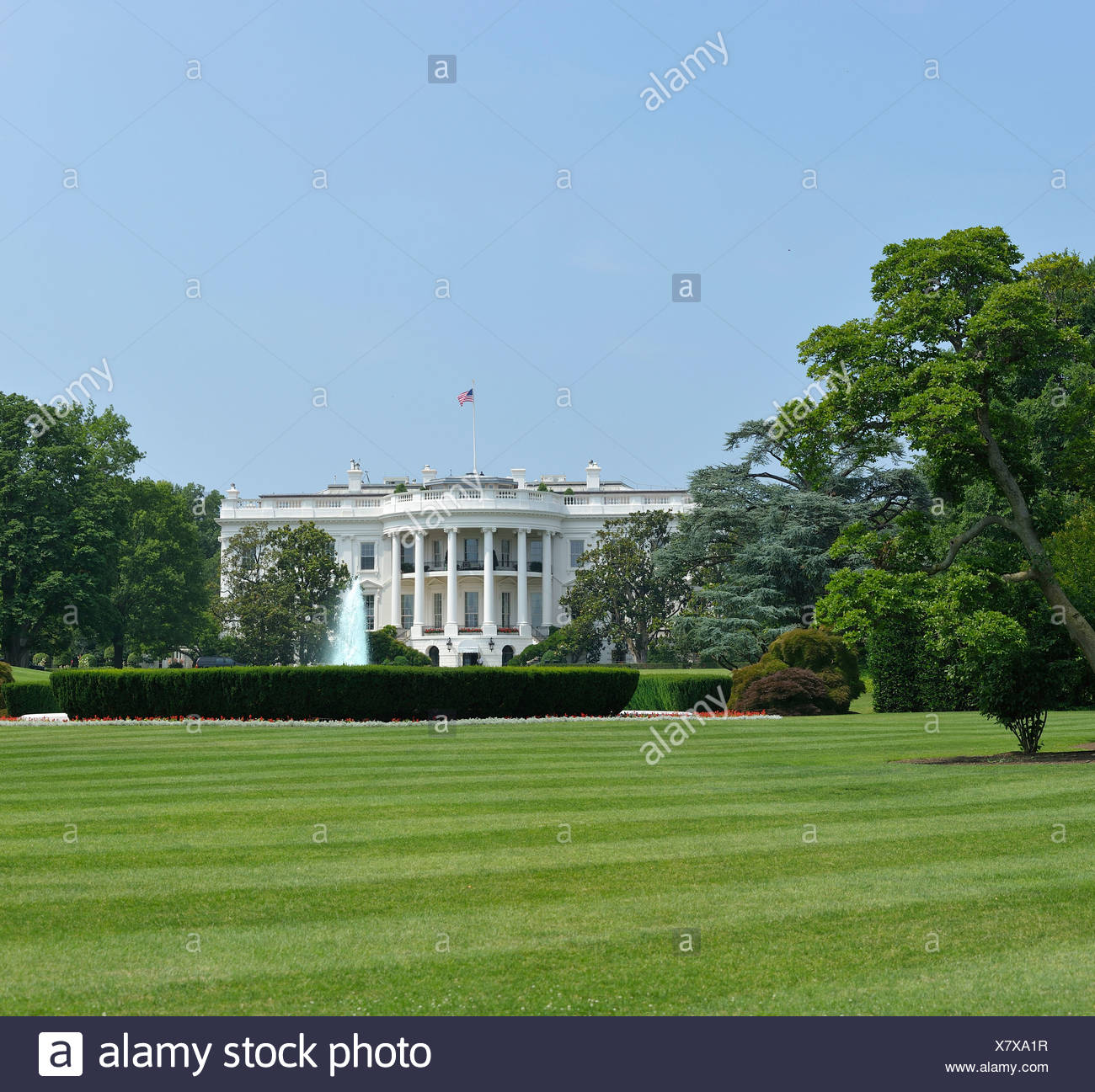 White House, The Mall, Washington D.C., District of Columbia, USA, United States, America, grass - Stock Image
