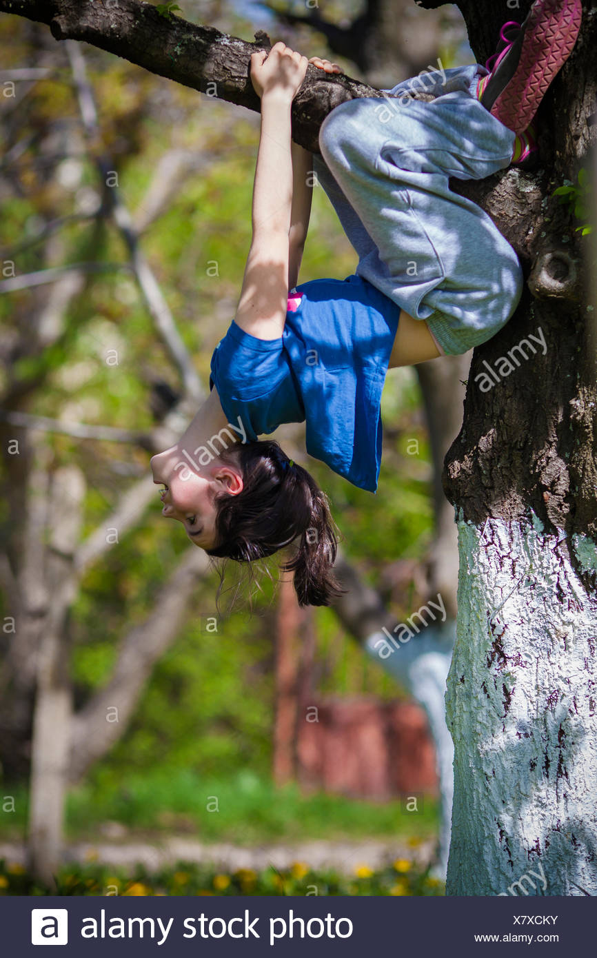 Young girl hanging upside down in a tree - Stock Image