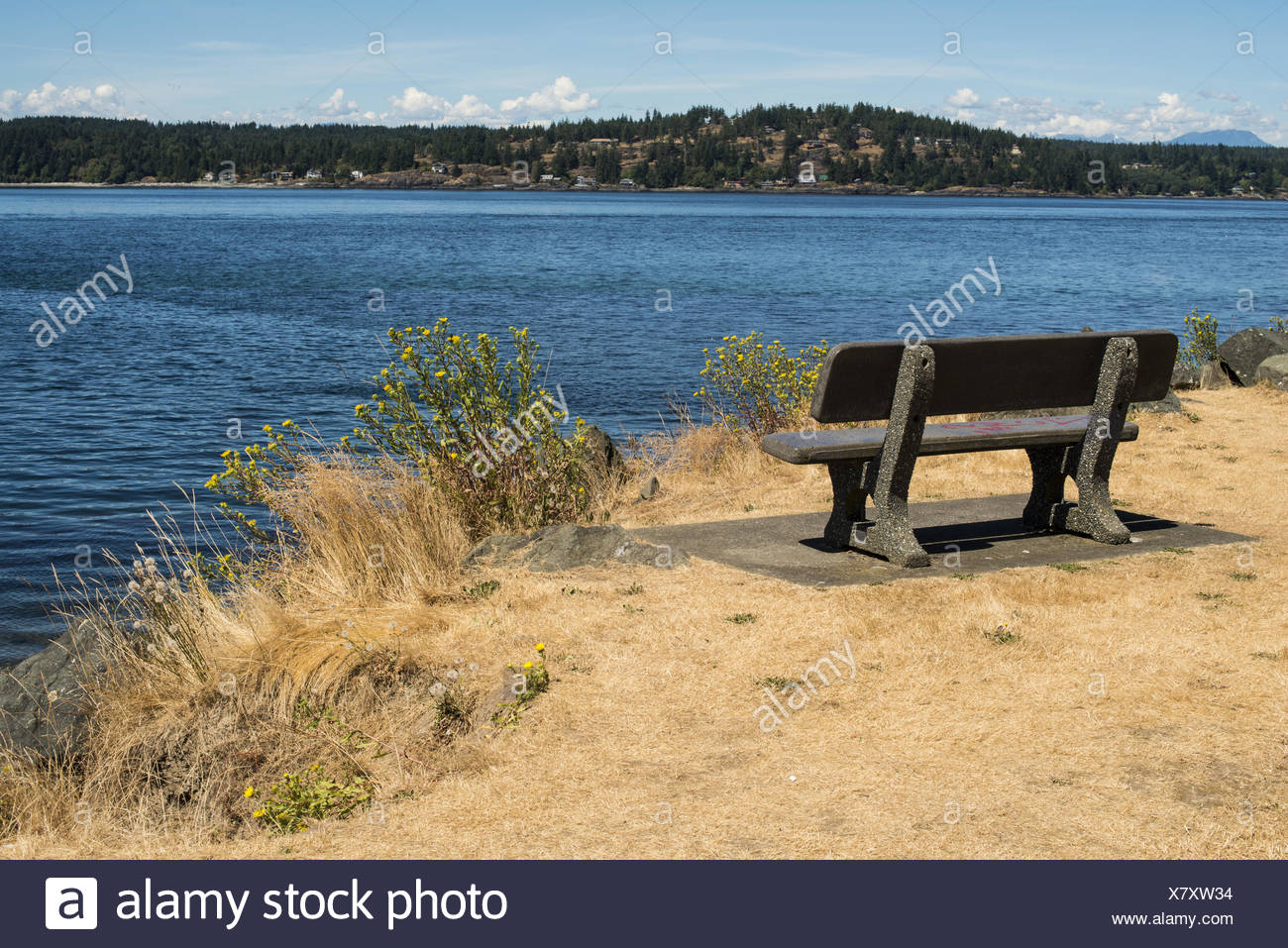 a bench in Robert V. Ostler Park in Campbell River, BC, Canada with a view toward Quadra Island - Stock Image