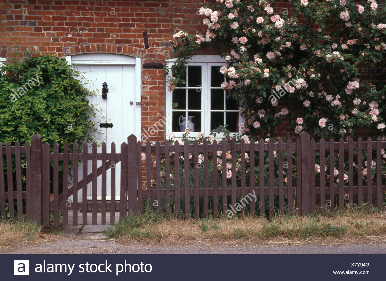 Wooden Fence And Gate In Front Of Cottage With Pink Climbing Roses