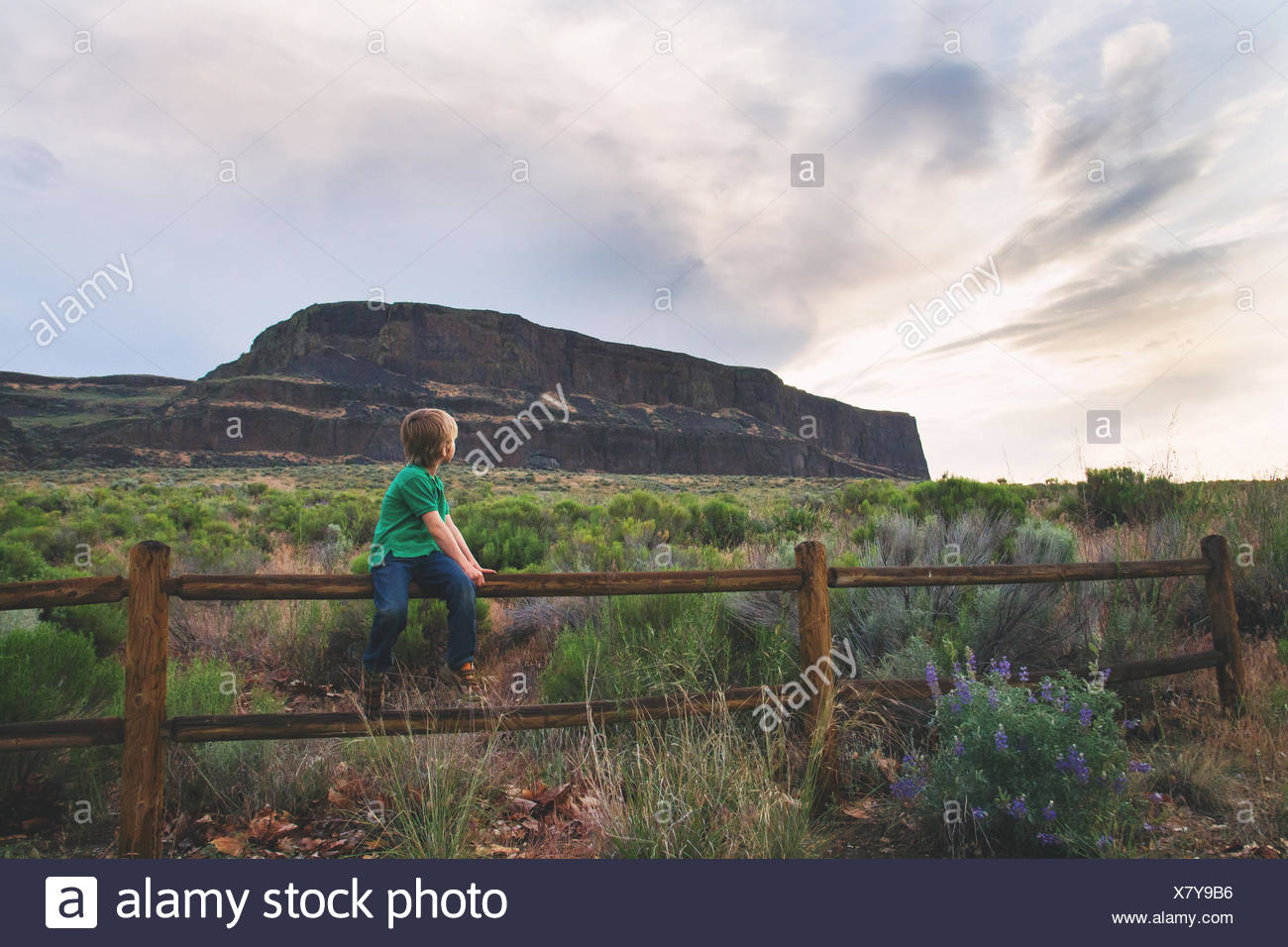 Boy sitting on wooden fence looking over his shoulder - Stock Image