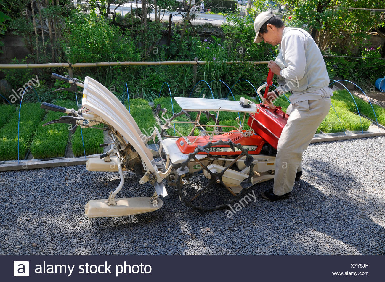 Rice farmer giving his rice-planting machine an overhaul, rice shoots in the back, Iwakura, Kyoto, Japan, Asia - Stock Image