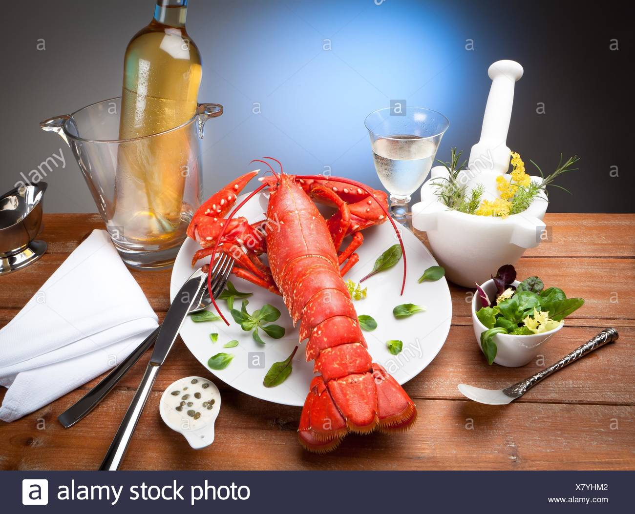 still life of cooked lobster with spices. Stock Photo