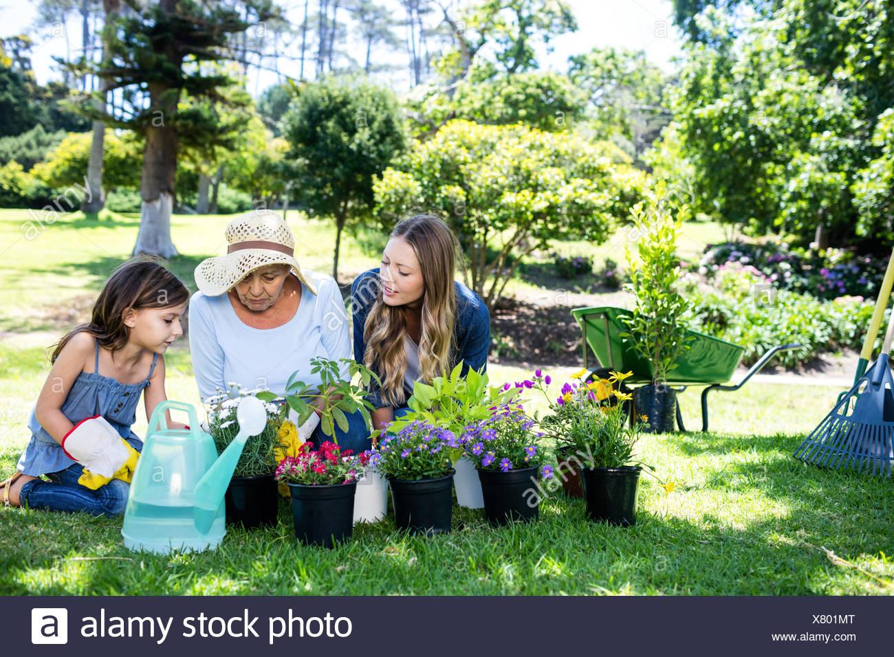 Multi-generation family gardening in the park - Stock Image