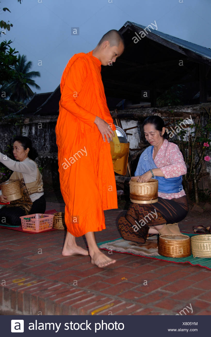 Buddhist monk with begging bowl receiving rice in the morning, Luang Prabang, Laos, Southeast Asia - Stock Image