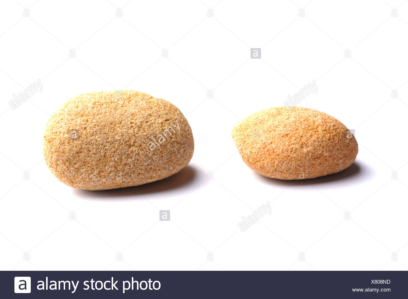 stone isolated on a white background with shaddow - Stock Image