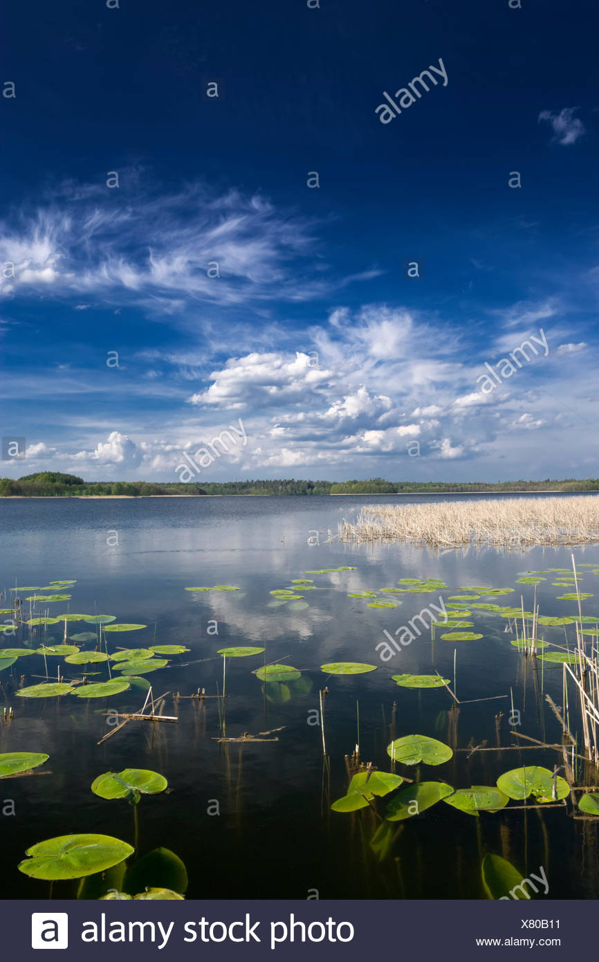 fresh water lake inland water - Stock Image