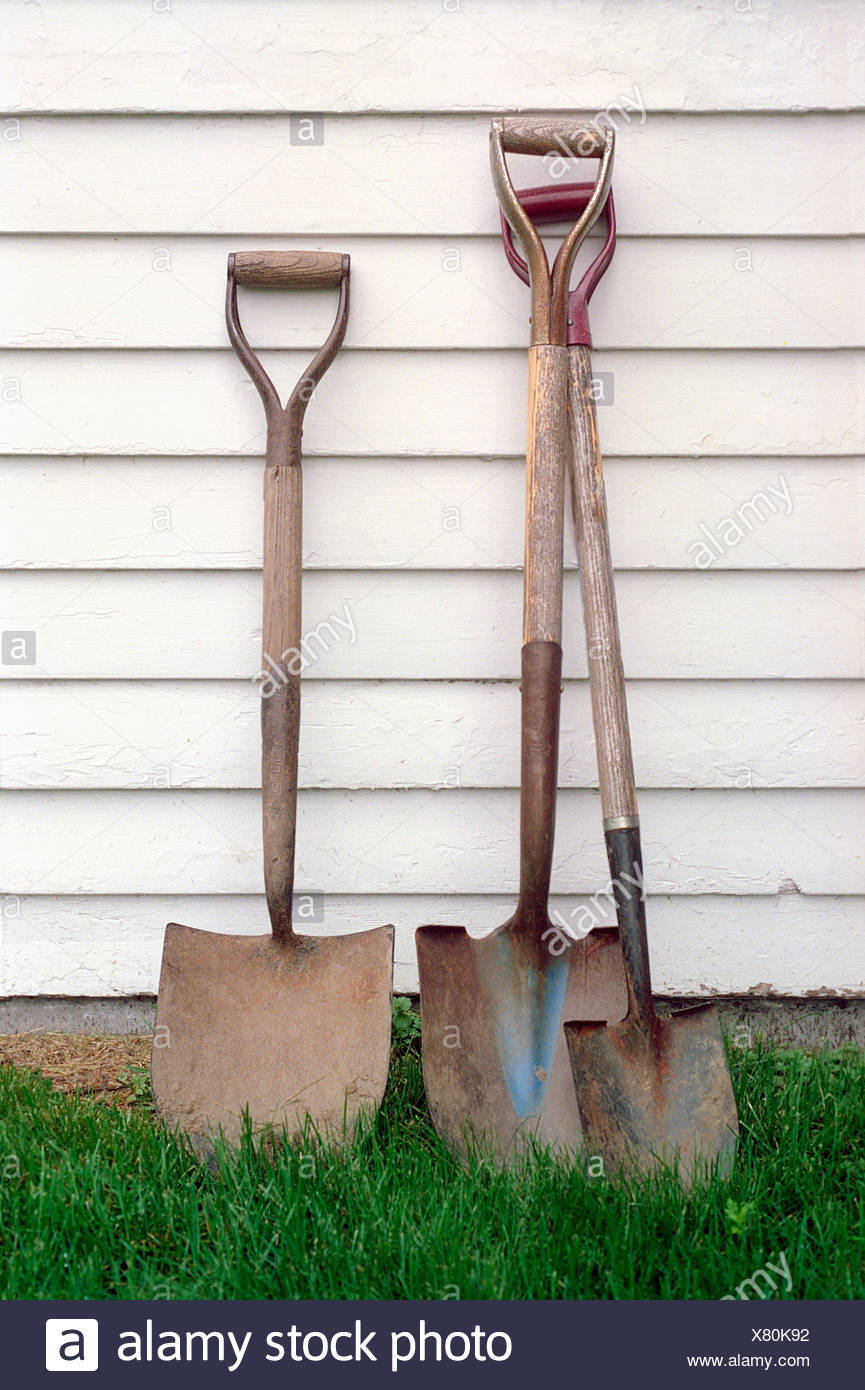 Shovels leaning on white wall - Stock Image