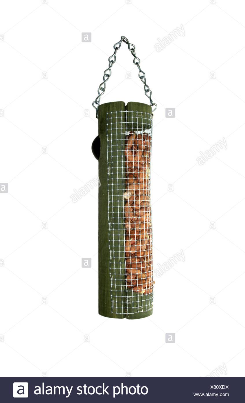 Common Garden Peanut Bird Feeder - Stock Image