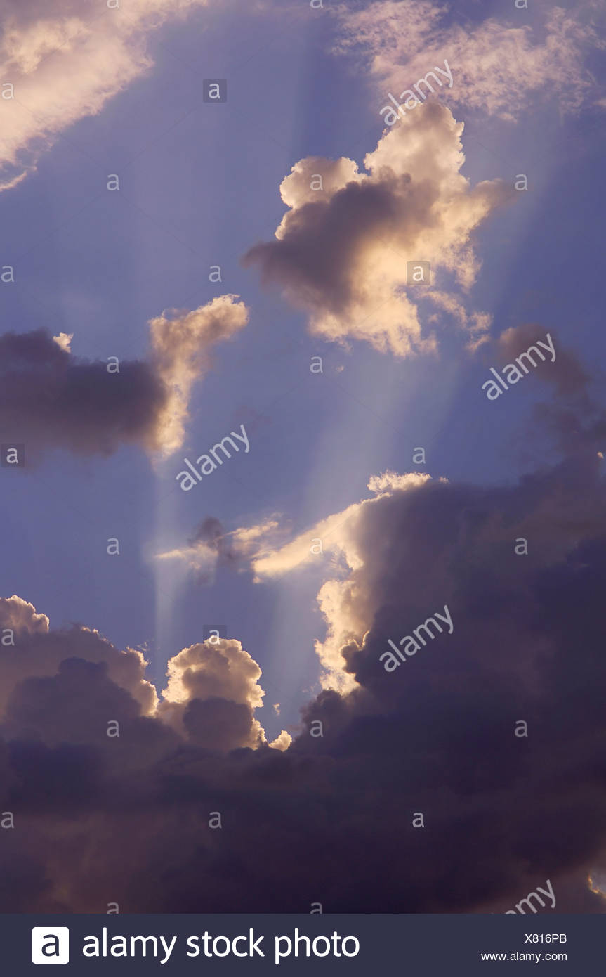 Sun rays shining through clouds, low angle view - Stock Image