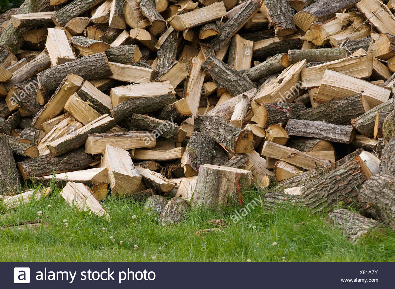 Chopped firewood, piled up logs on a lawn - Stock Image