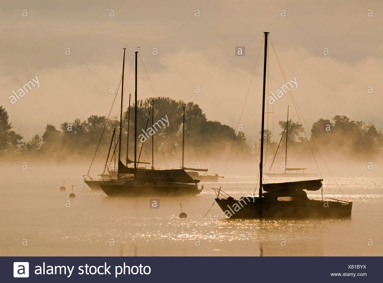 Sailing boats and fog at the southern end of Ammersee lake in Diessen, Bavaria, Germany, Europe Stock Photo