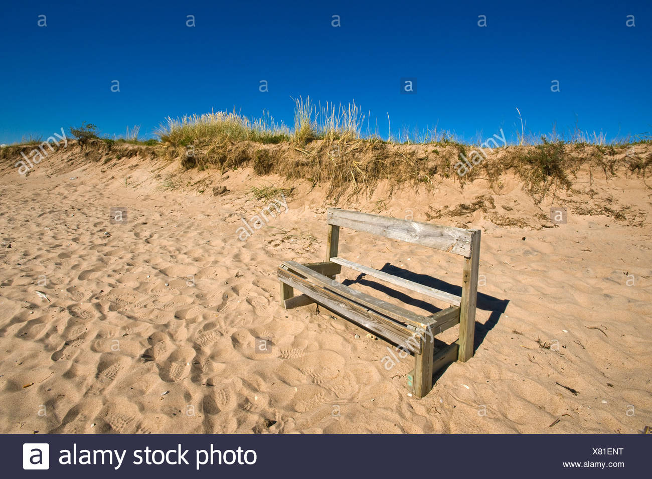 Bench in a ruinous condition in the dunes, Harielaide peninsula, Vilsandi National Park, Saaremaa, island in the Baltic Sea - Stock Image