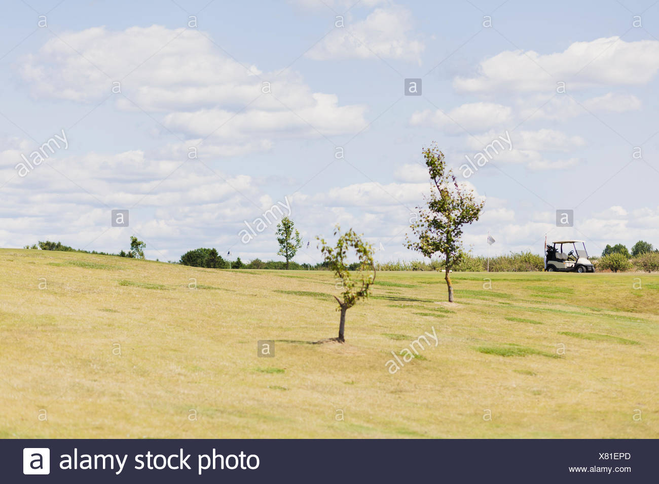 Mid distance view of golf cart on field against sky - Stock Image