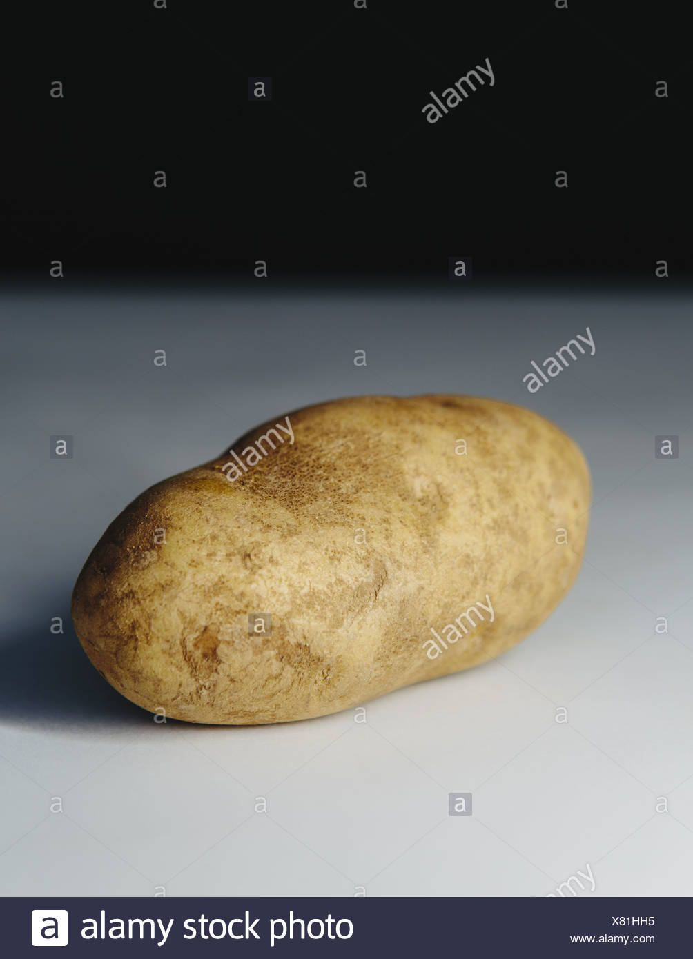 A scrubbed clean organic russet potato. - Stock Image