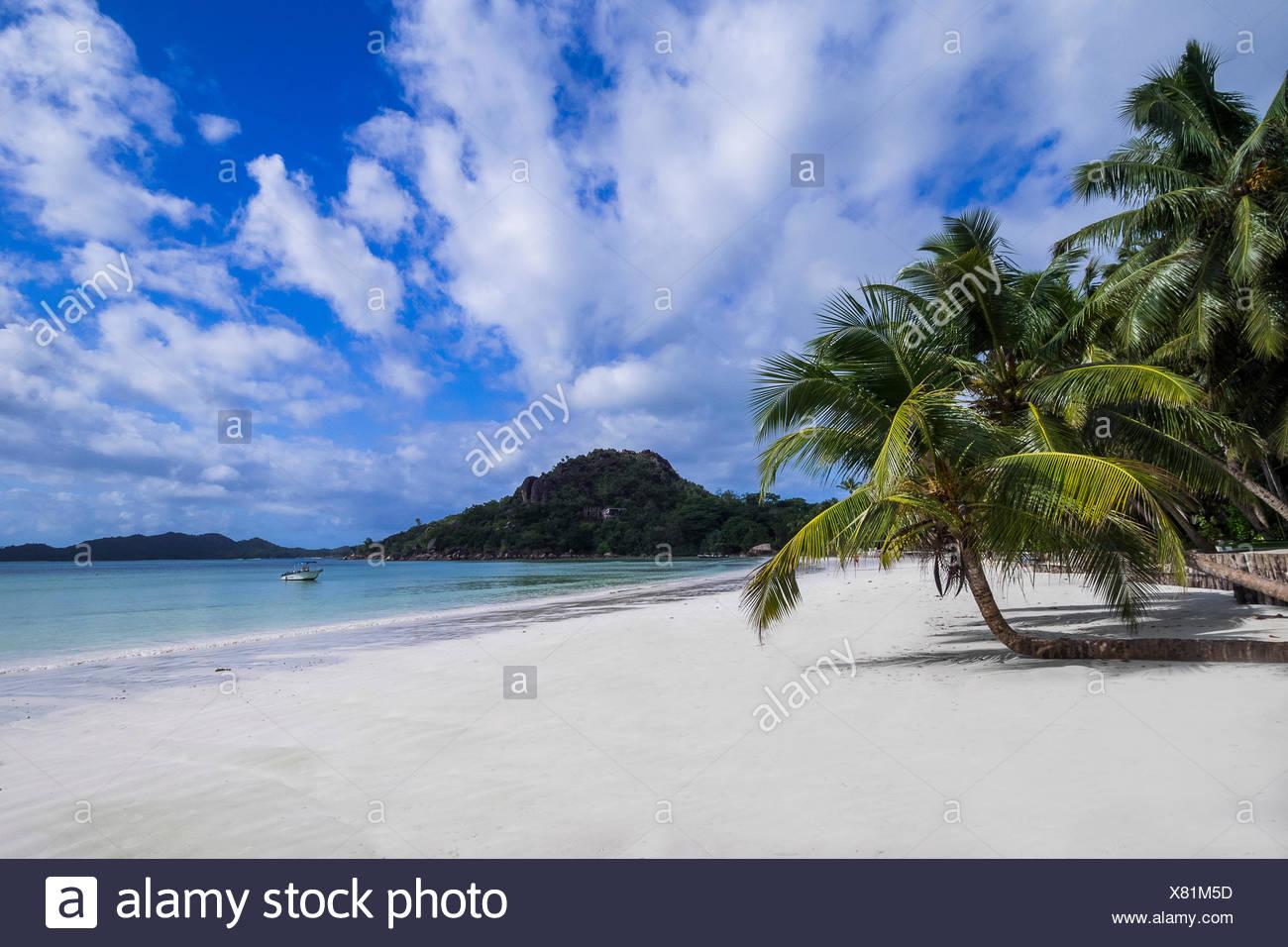 seychelles - praslin,on the cote d'or / anse volbert Stock Photo