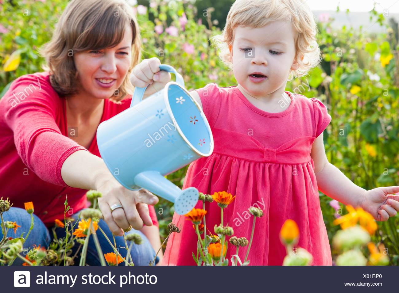 Mid adult mother and toddler daughter watering flower field - Stock Image