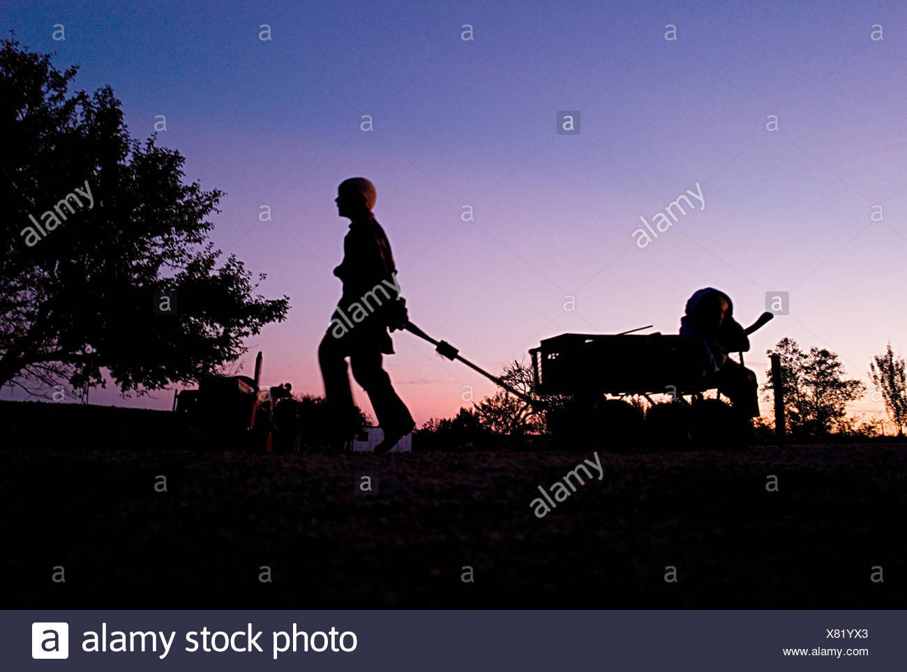 At dusk a boy totes his younger brother in a wagon back from their farm stand. - Stock Image