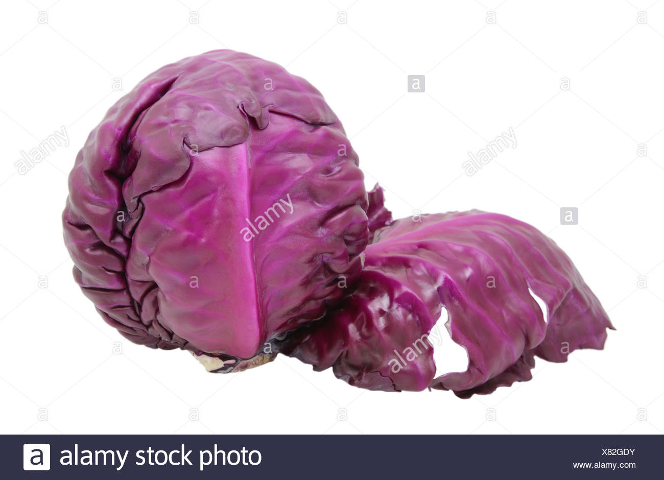 Red cabbage with a leaf peeling away - Stock Image