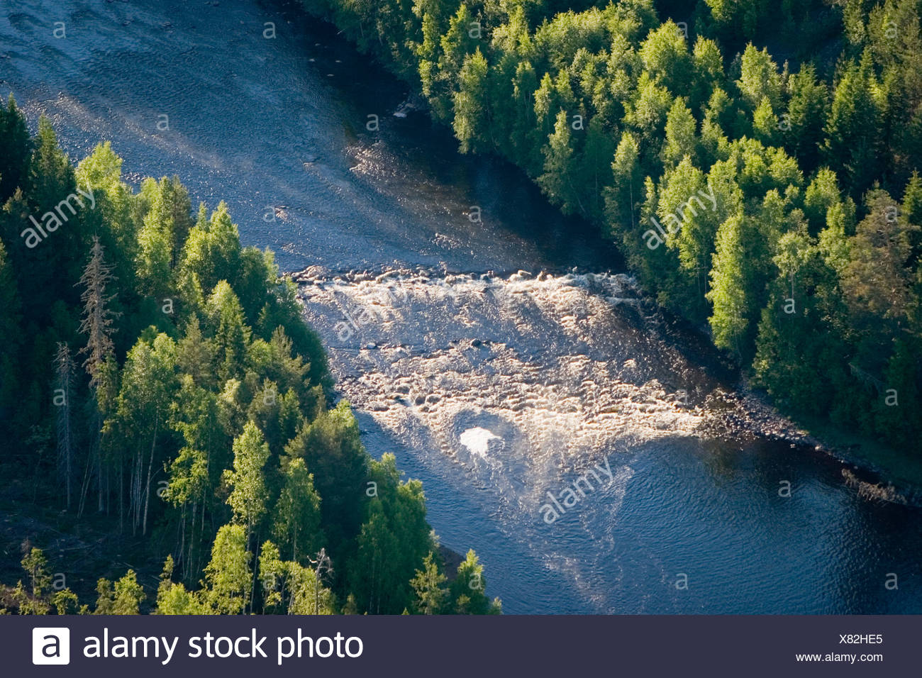 A river in a forest, Sweden. - Stock Image