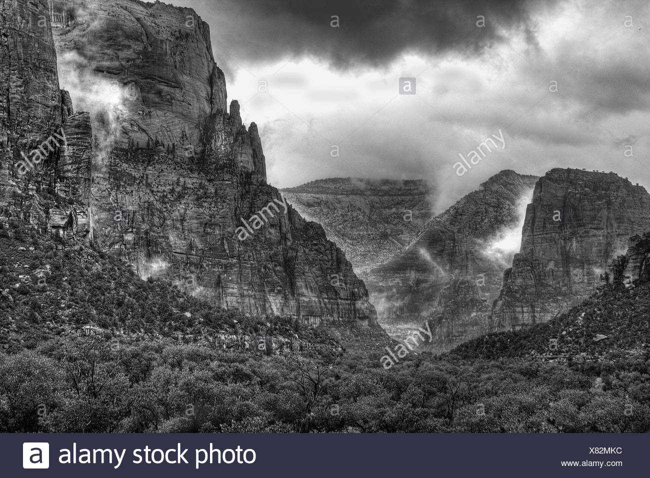 Rain and fog have enveloped Zion Canyon on a stormy afternoon at Zion National Park,Utah - Stock Image