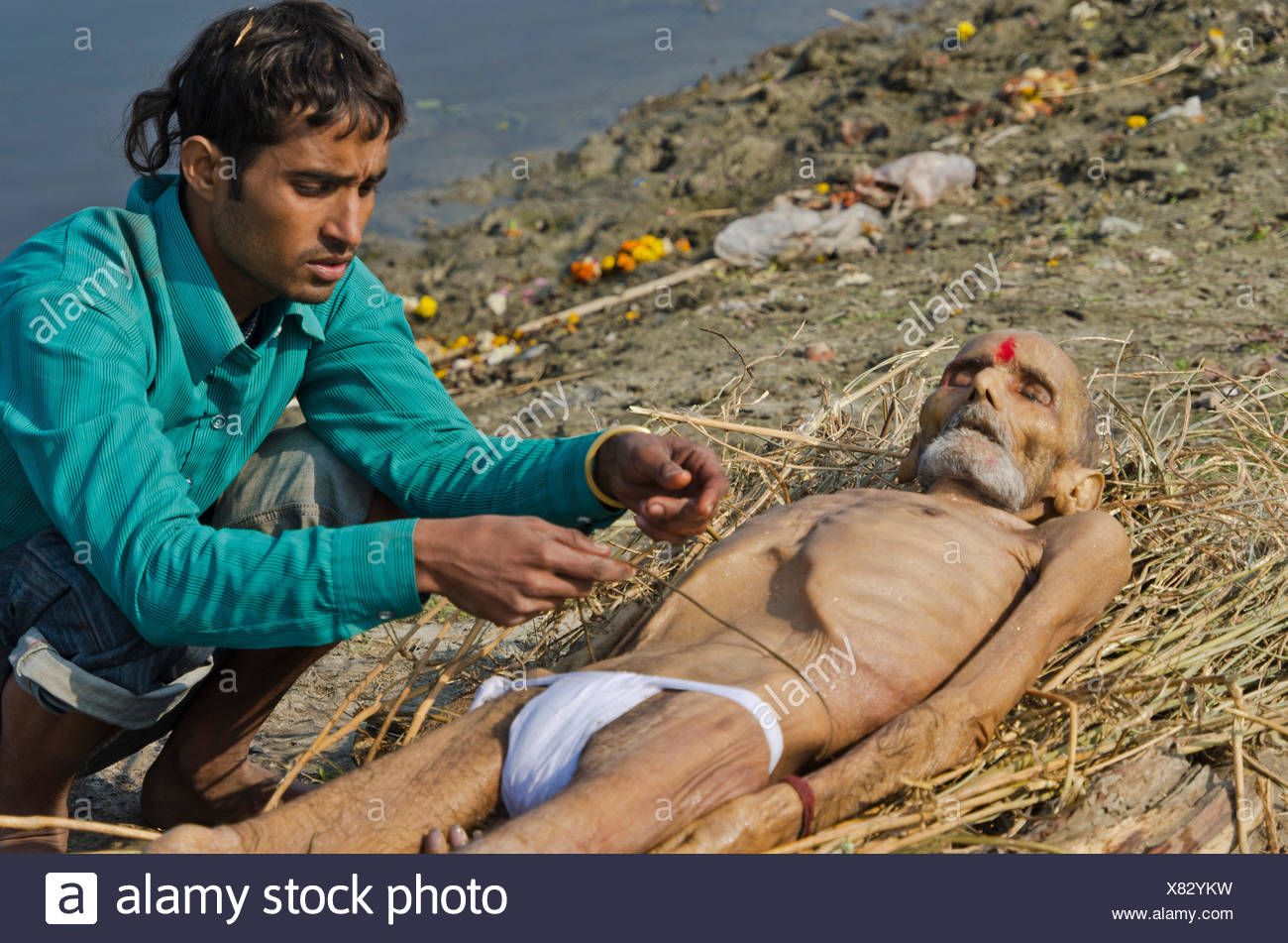 Putting a dead body on firewood on the banks of river Yamuna as part of a cremation ceremony, Vrindavan, India, Asia - Stock Image