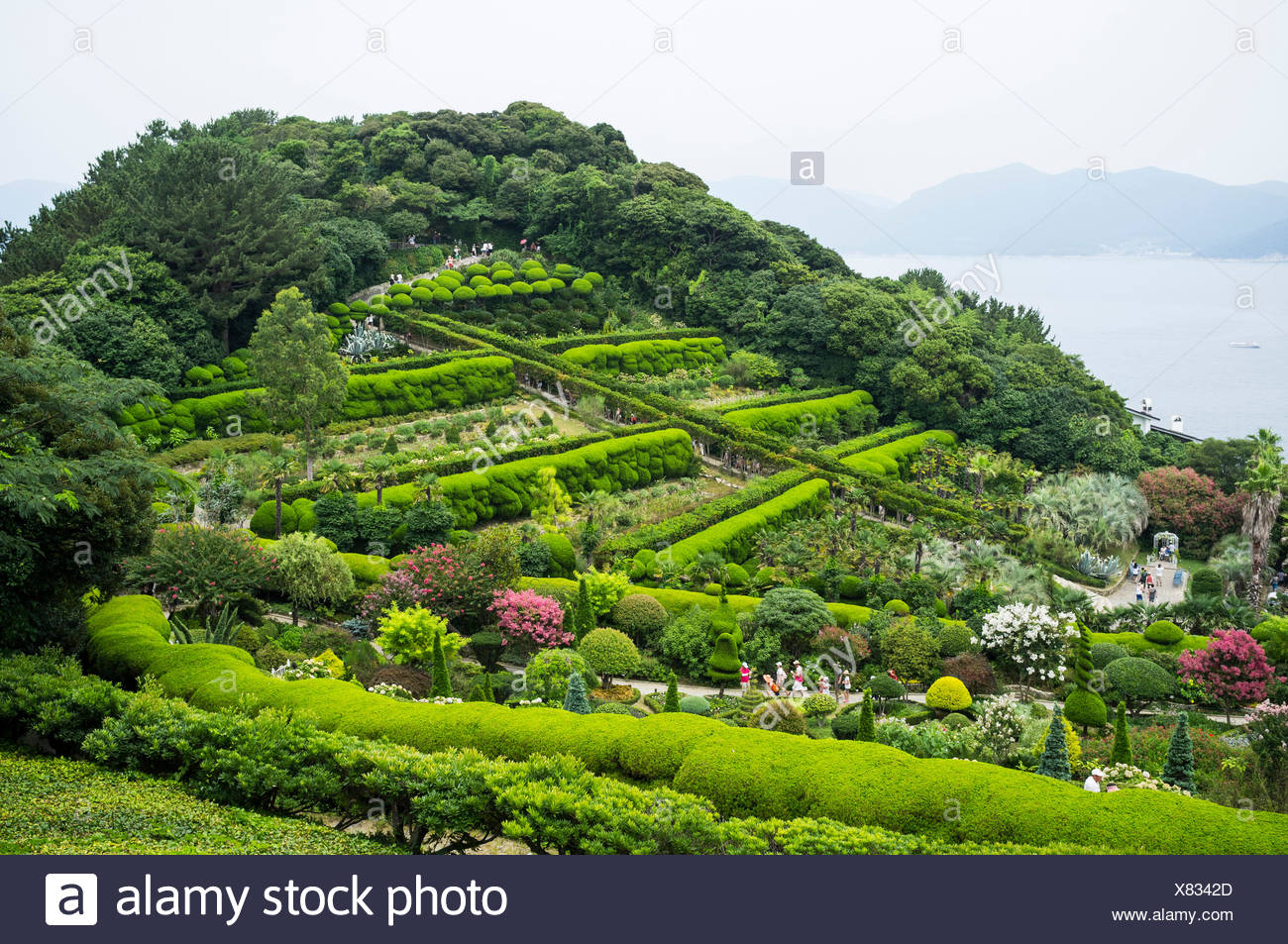 Garden On A Hill, South Korea.