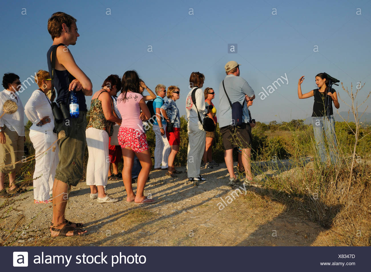 ornithological guided tour in a nature reserve, Greece, Peloponnes, Messinien - Stock Image