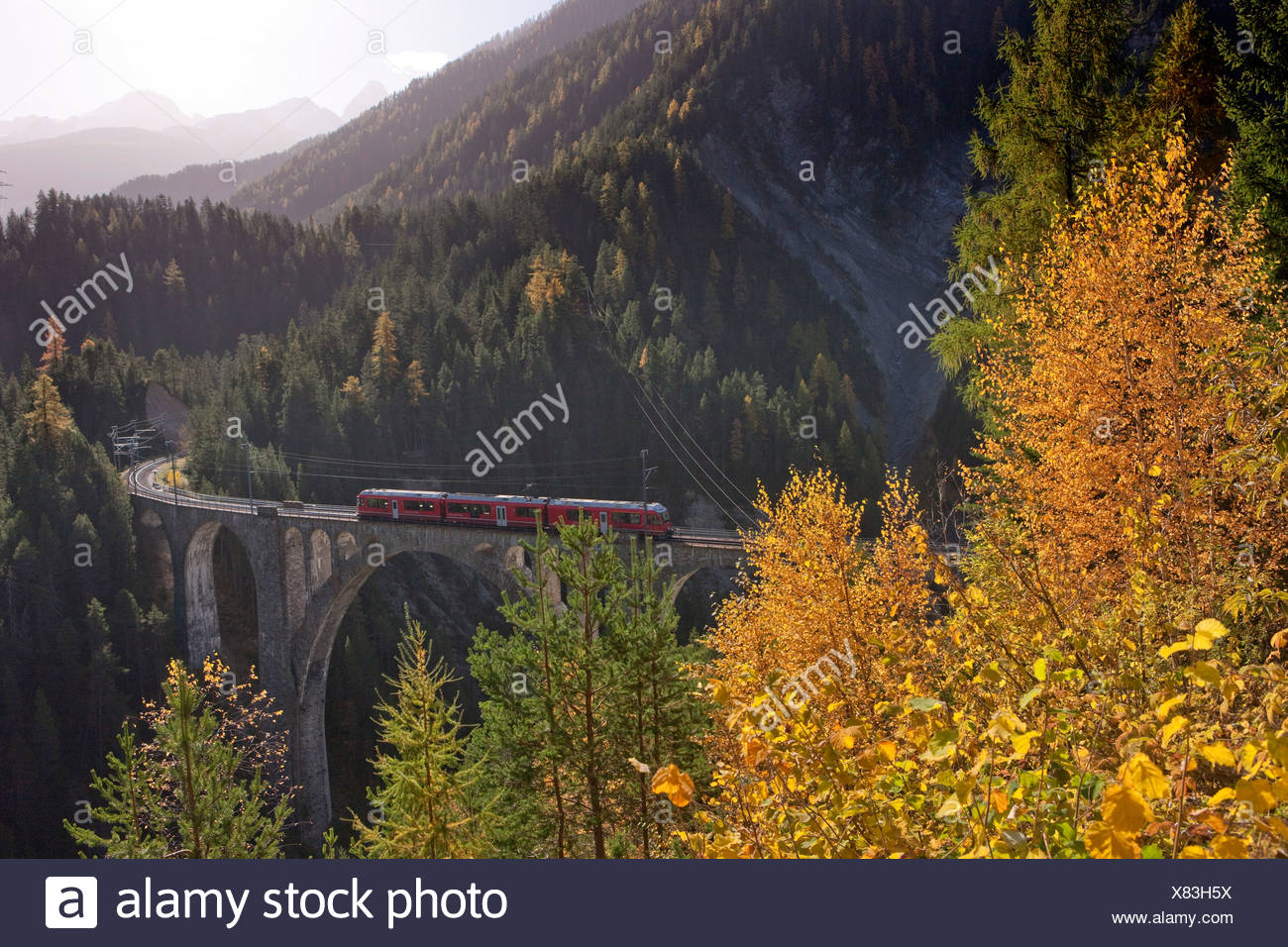 Rhaetian Railway, meadow viaduct, meadows, road, railway, train, railroad, bridge, autumn, wood, forest, canton, GR, Graubünden, - Stock Image