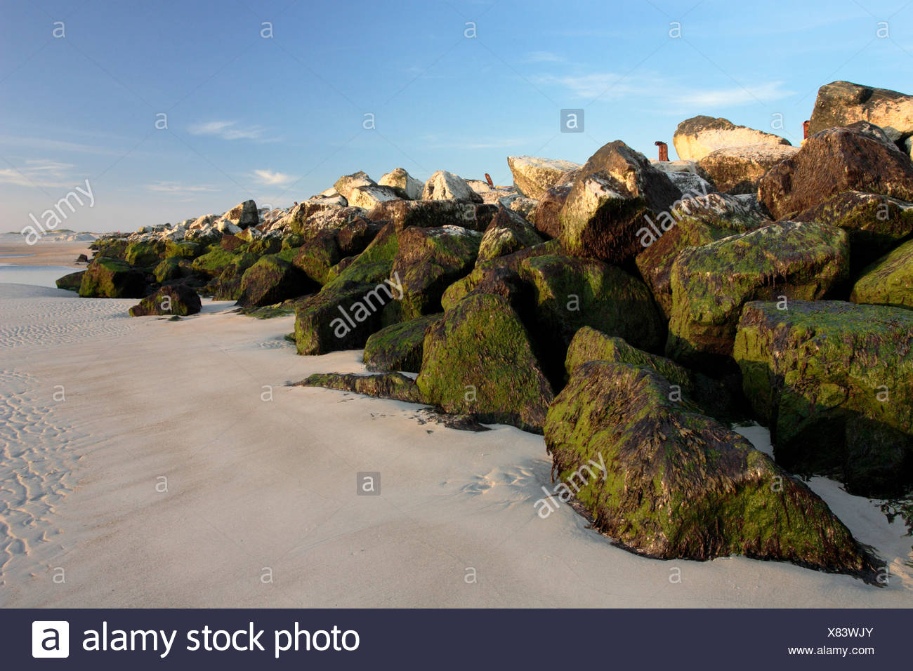 wave-breakers on the dune of north beach, Germany, Helgoland Duene - Stock Image
