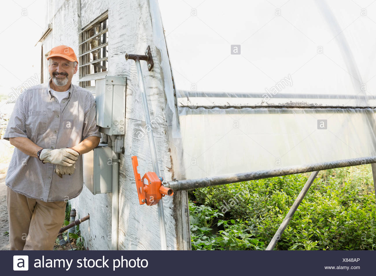 Portrait of smiling worker outside greenhouse - Stock Image