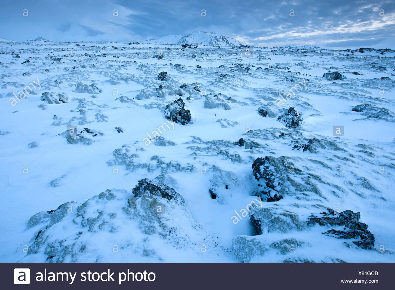 snow covered wasteland, Iceland, Hveragerdi, - Stock Image