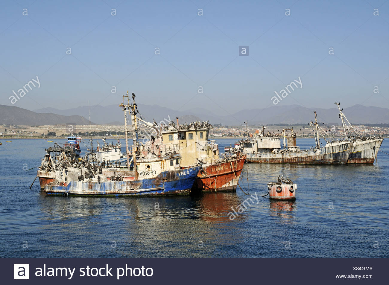 Old ships - Stock Image