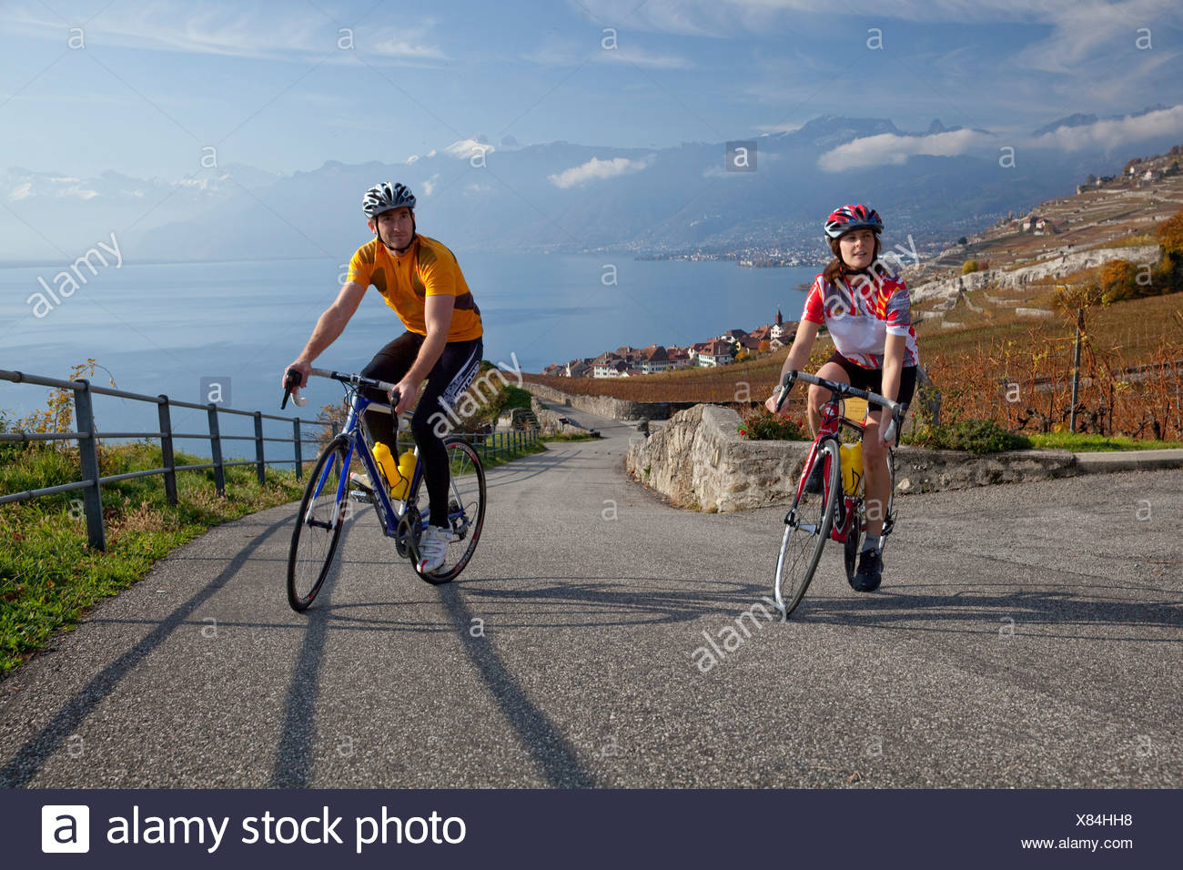 Cyclist, Rivaz, Lavaux, autumn, Castle, lake, lakes, canton, VD, Vaud, lake Geneva, Lac Leman, wine, shoots, wine, bicycle, bicy - Stock Image