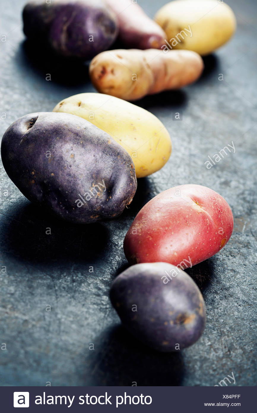 Mixed varieties of fresh potatoes - Stock Image