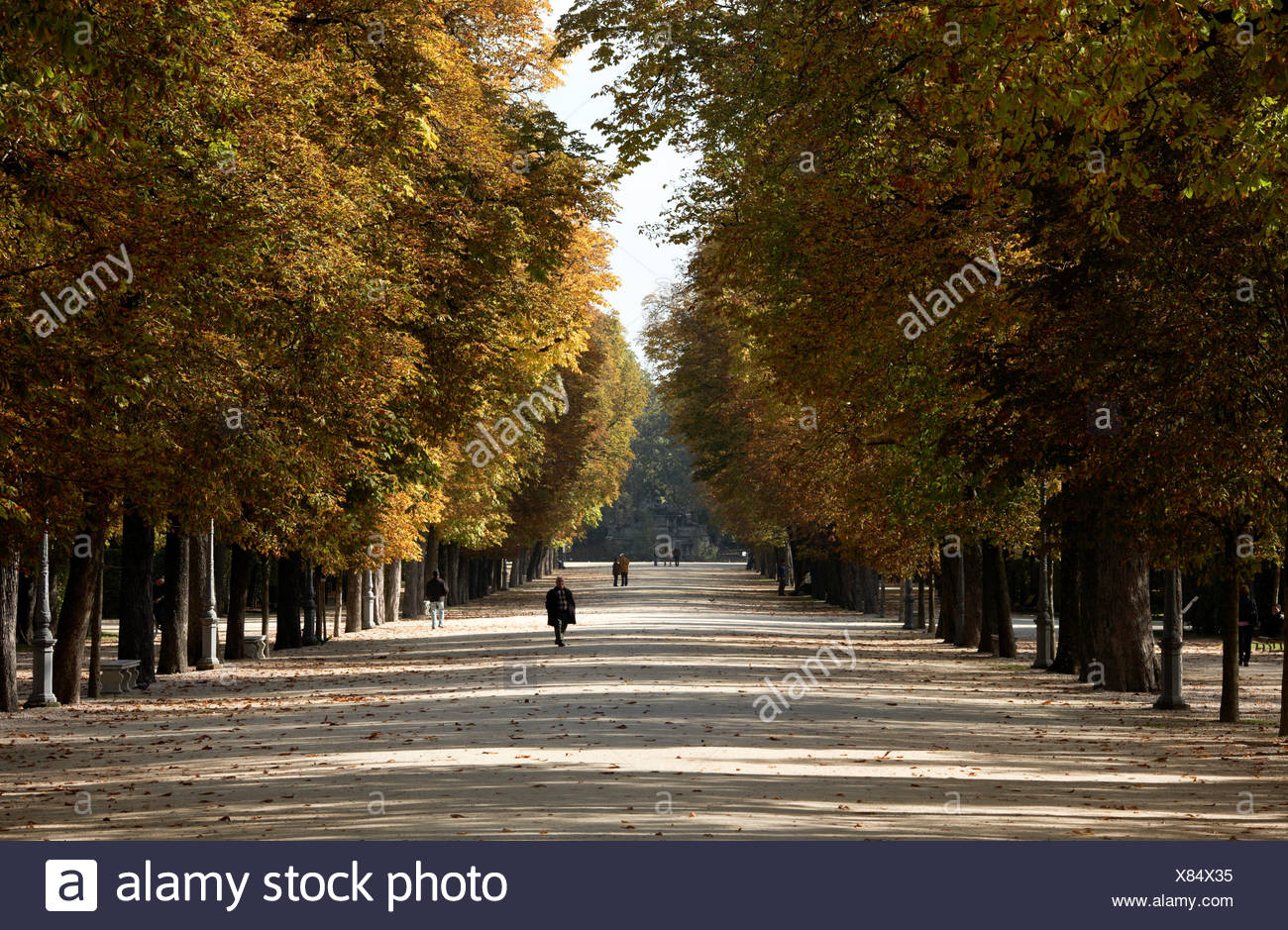 Parma residents stroll through tree-lined promenades in Parco Ducale. - Stock Image