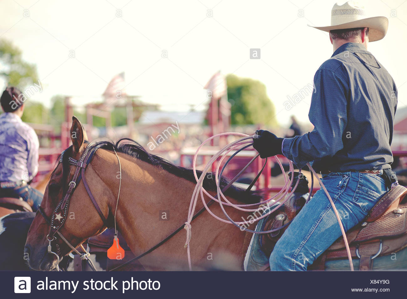 USA, Connecticut, Cowboy riding horse at rodeo - Stock Image