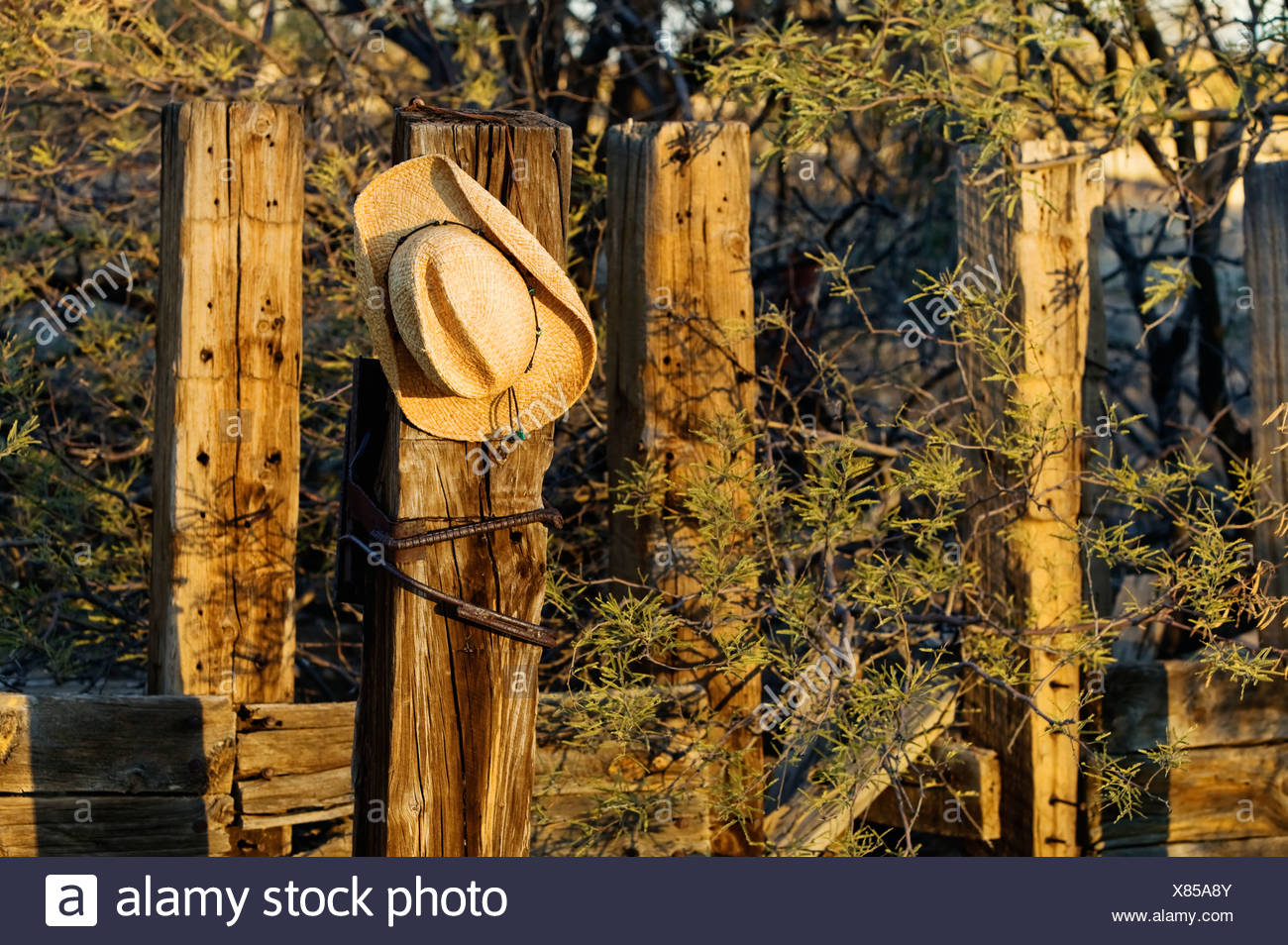 57ece83b6f5 Straw cowboy hat hanging on an old wooden post Stock Photo ...