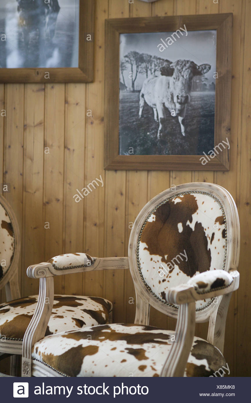 Chairs Cow Fur Reference Pictures Wall Holzvertäfelung Inner Equipment  Furniture Seat Furniture Seating Wood Chairs