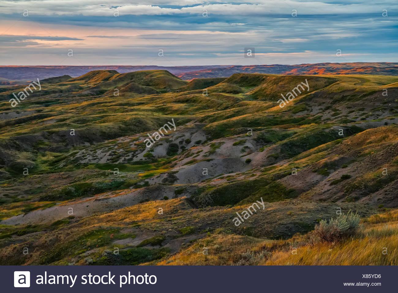 The Gillespie region of Grasslands National Park; Saskatchewan, Canada - Stock Image