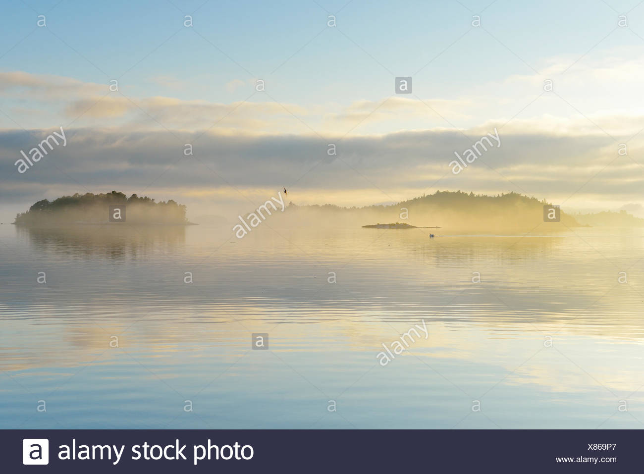 Sweden, Stockholm Archipelago, Uppland, Lidingo, View of sea and islands at dawn - Stock Image