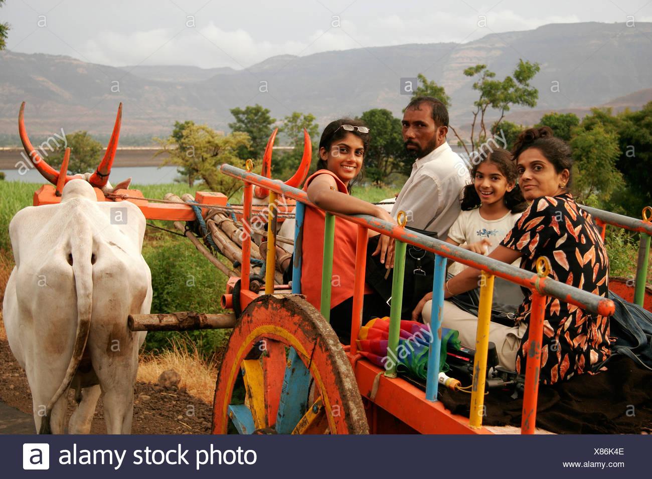Mother and daughters enjoying bullock cart ride ; Wai ; Maharashtra ; India MR# 645;189;191 - Stock Image