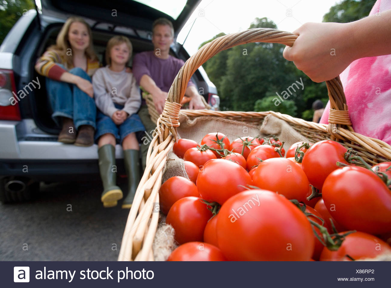 Girl (8-10) with basket of tomatoes, family in boot of car - Stock Image
