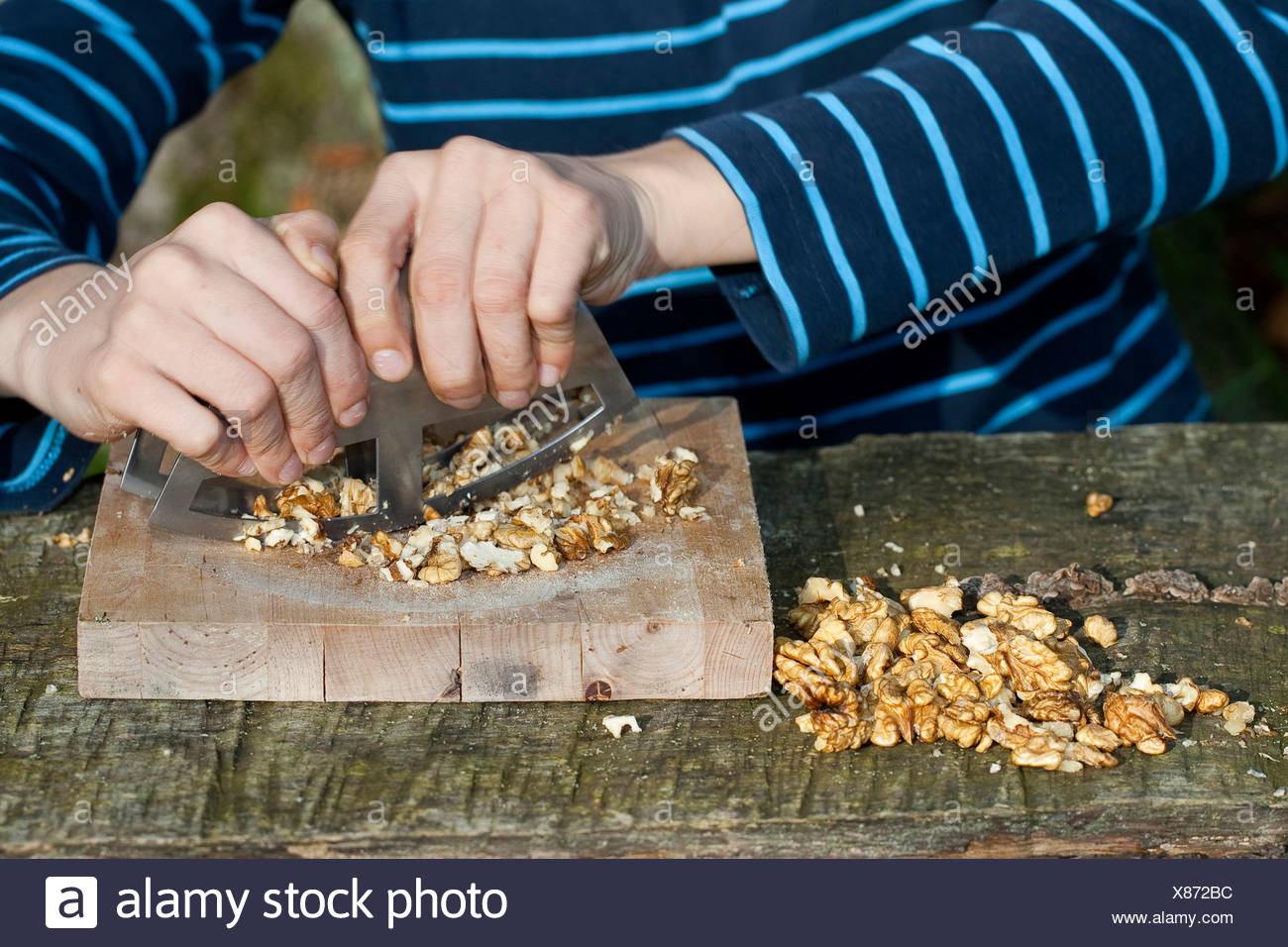 boy making pesto from self-collected walnuts and sunflower seeds, olive oil and parmesan cheese, walnuts are hackled, Germany - Stock Image