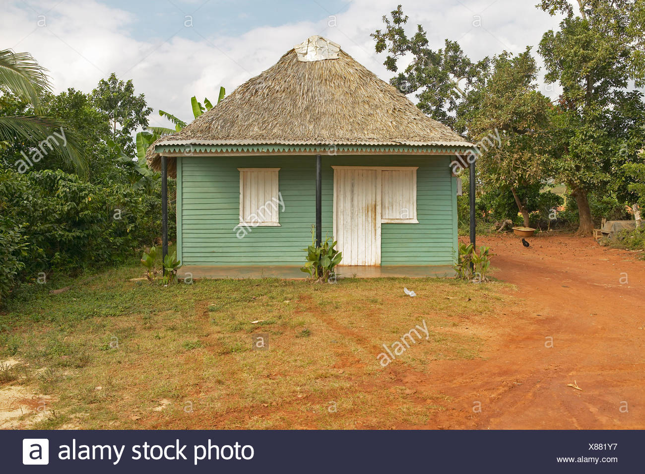 Small green house with thatched roof in Valle de Viñales, in central Cuba - Stock Image