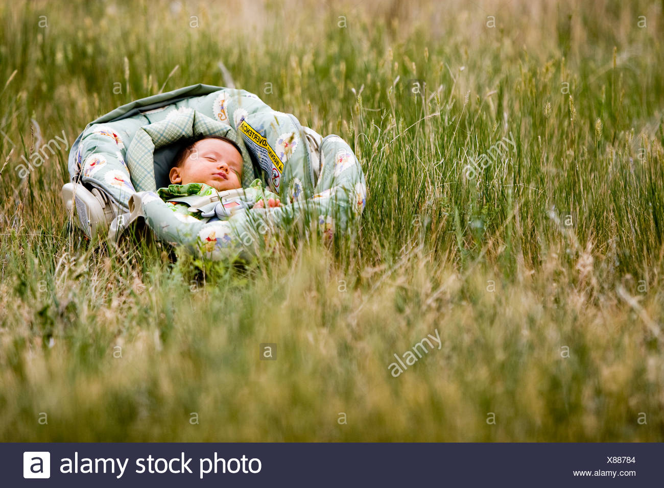 A baby sleeps in a car seat in the middle of a grassy field in Colorado. - Stock Image