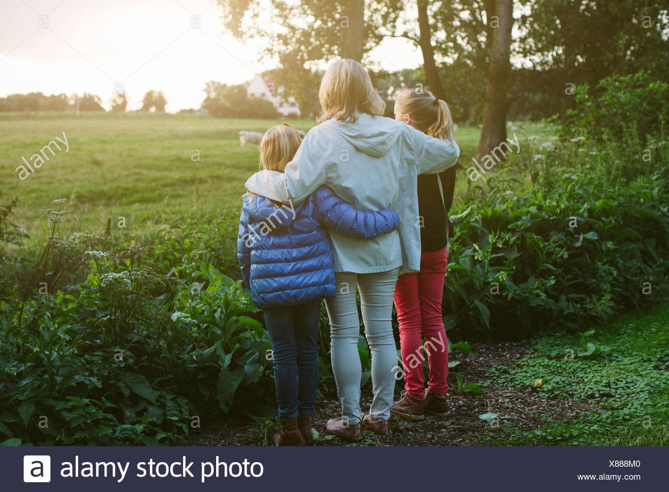Grandmother and granddaughters looking at field - Stock Image