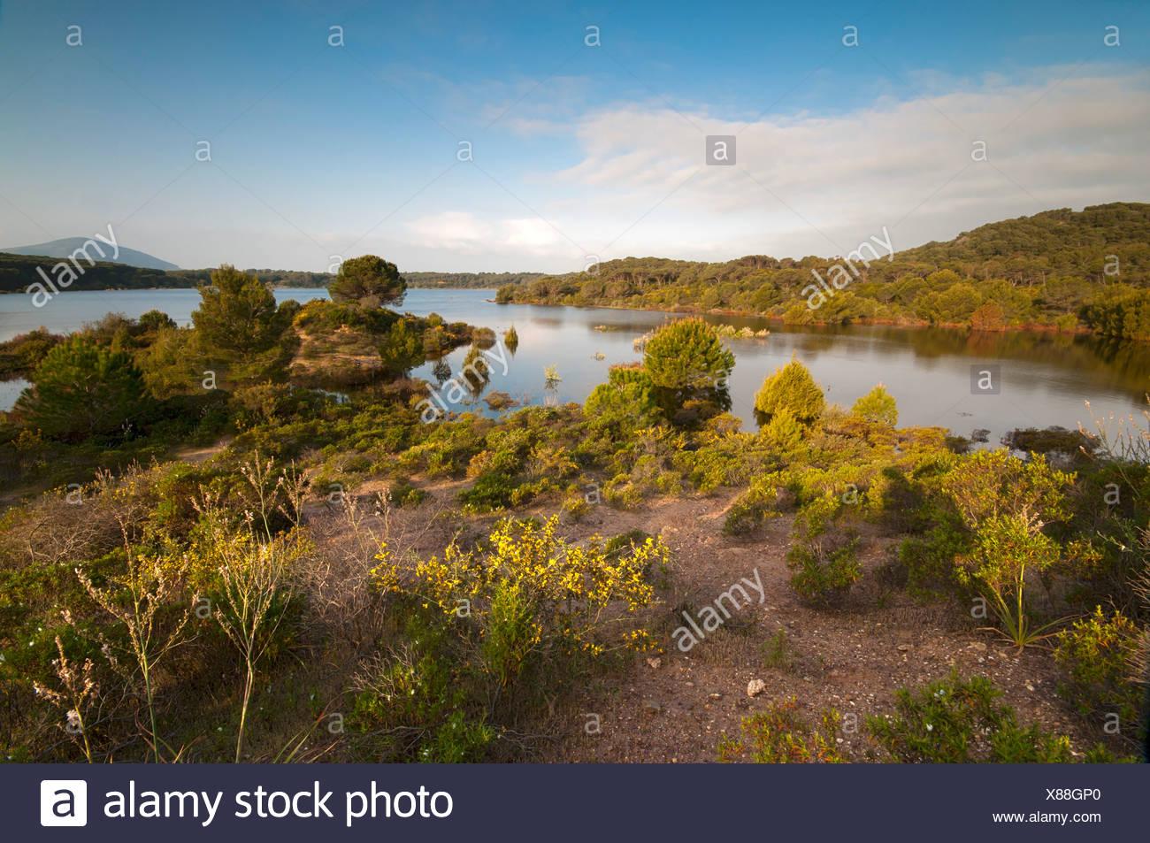 Lago Baratz, the only natural freshwater lake in Sardinia, Alghero, Sardinia, Italy, Europe - Stock Image