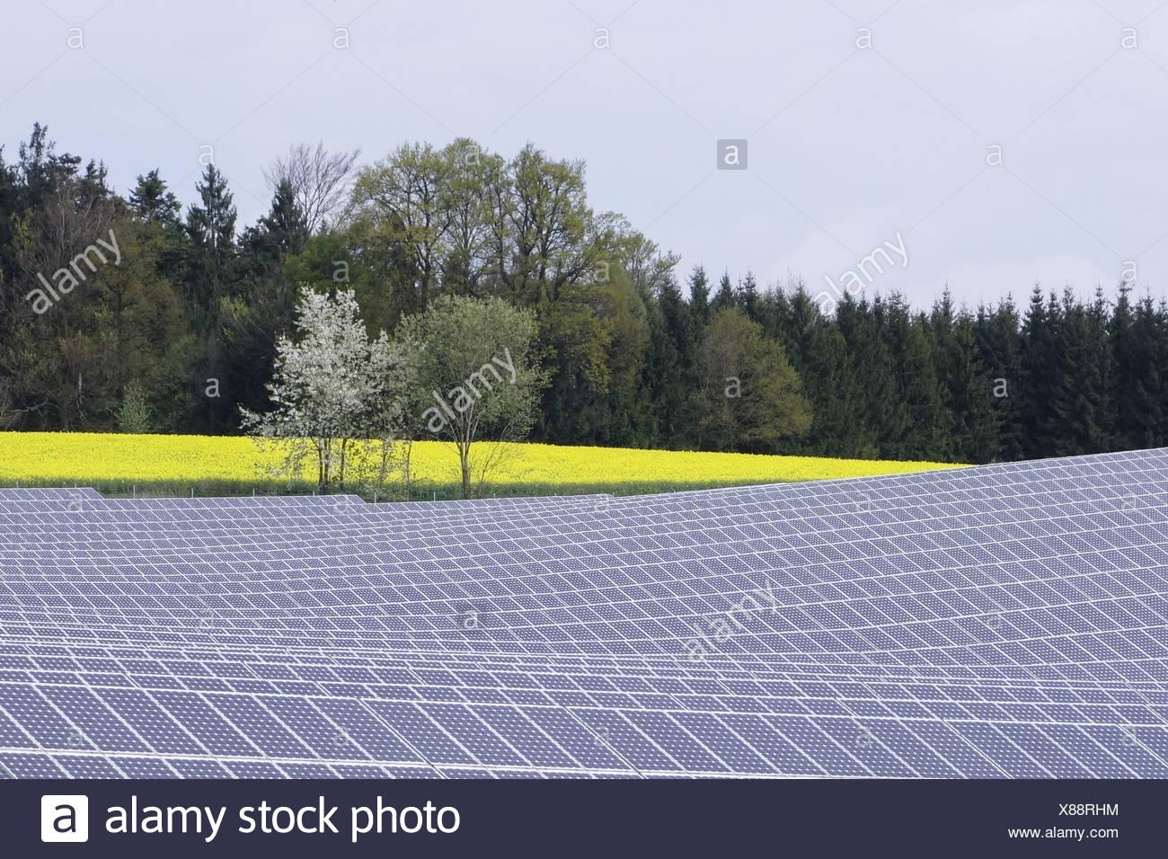 Solarfeld in Niederbayern, Bayern, Deutschland, Europa Stock Photo